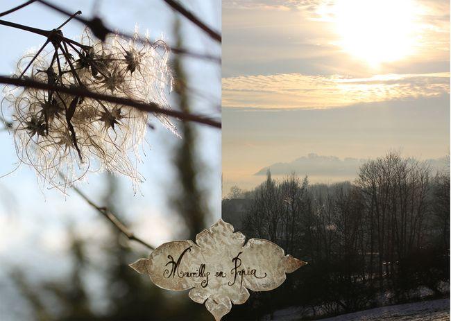 Montagne-janv2011