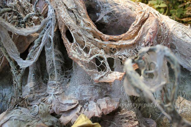 Les-cygnes-sauvages-détail-2