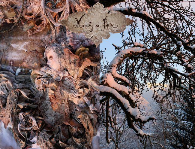 Les-cygnes-sauvages-détail-10