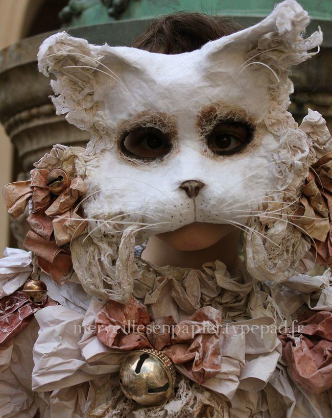 White-cat-6