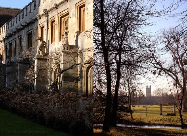 Magdalen-college