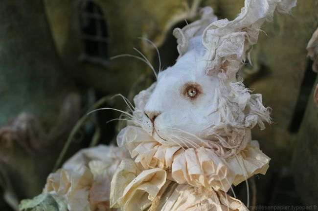 Lapin-blanc-alice-5
