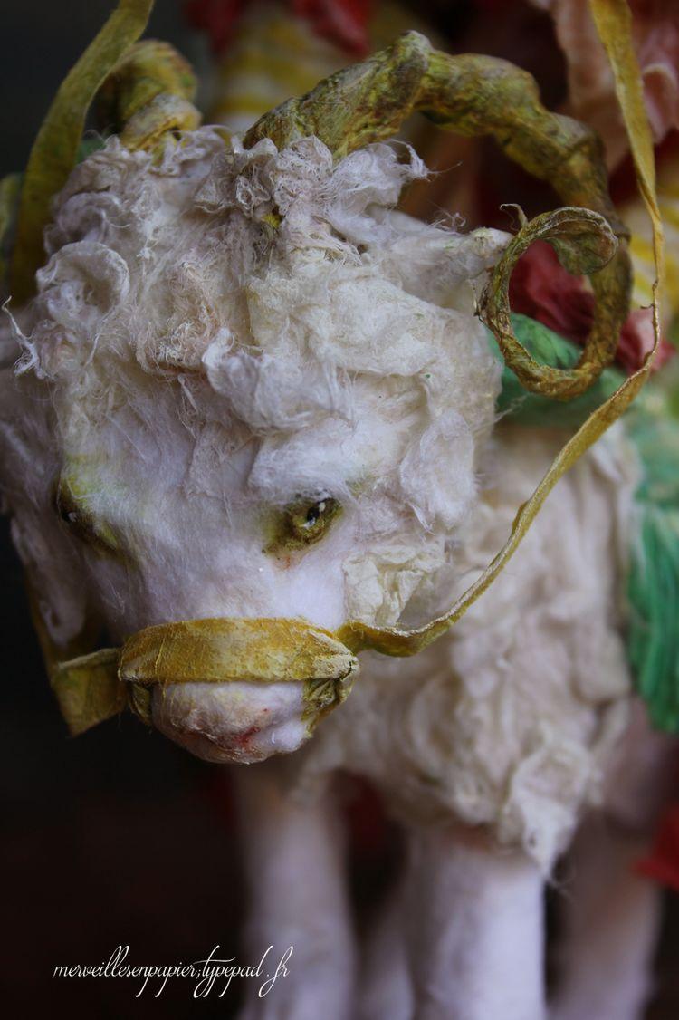 Chat-mouton-10