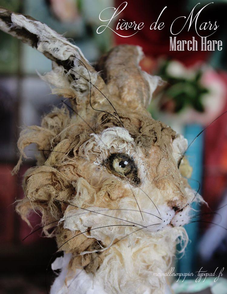 Lièvre-de-mars-1